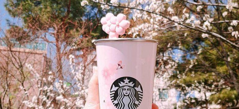 بكوريا الجنوبية : ستاربكس باللون الوردي ..